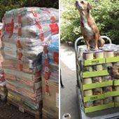 Tierrefugium_Hanau_1-Tierheim-des-Monats-Tierschutz-Shop-Futterspenden