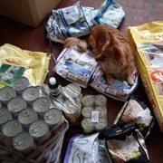 ein_zuhause_für_verlassene_tiere_1-Tierschutz-Shop-Futterspenden