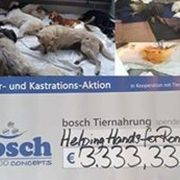 helping_hands_for_romanian_strays_scheck