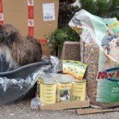 pfotenhilfe_mit_herz_1-Tierschutz-Shop-Futterspenden