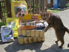 tierhilfe_fortuna_1-Tierschutz-Shop-Futterspenden