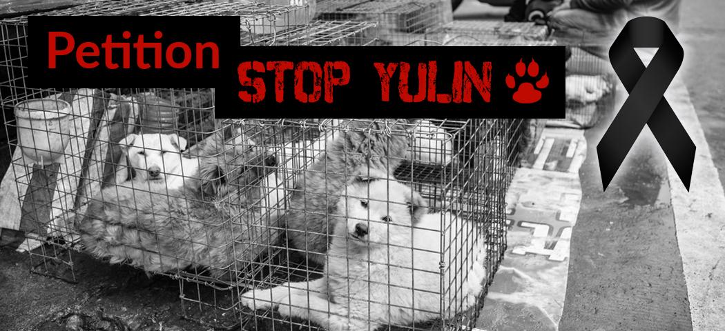 Petition Yulin Tierschutz-Shop