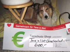 tiere-in-not-griechenland-1