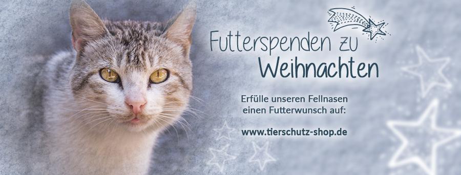 Futterspenden zu Weihnachten Tierschutz-Shop Titelbild Facebook Katze