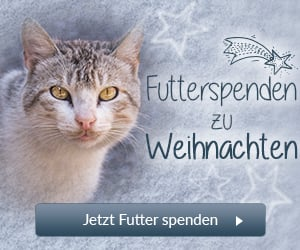 Tierschutz-Shop Futterspenden zu Weihnachten