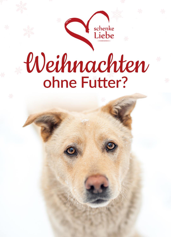homepage-schenke-liebe-mobil-3
