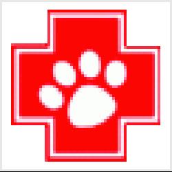 Notpfote Animal Rescue