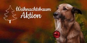 """Wunschliste """"Gemeinschafts-Wunschliste: Weihnachtsbaum-Aktion"""""""