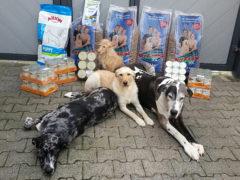 Tierhilfe-ohne-Grenzen-e.V._1