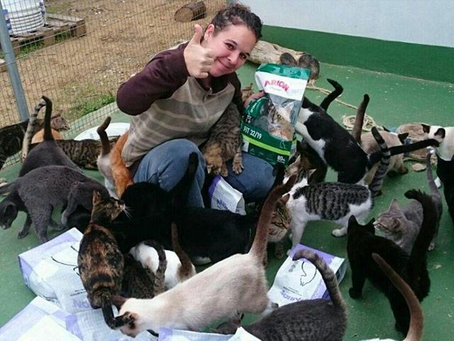 Tierschutz-Shop Transparenz Seriös spenden Sichere Spendenankunft Gerüfter Verein Tierschutz-Shop Transparenz Seriös spenden Sichere Spendenankunft Sieben Katzenleben
