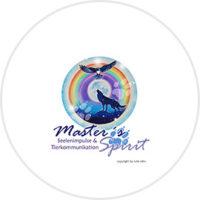 Masters-Spirit-Logo-Firmenpatenschaften