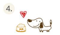 Tierschutz-Shop-Spendenplattform-Spendenaktionen-Wie-funktioniert-Tierschutz-Shop-Grafik_04
