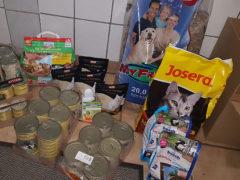 Tierschutzverein-Freital