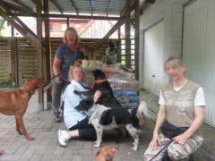 Spendenankunft Hundehilfe-Bakony