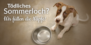 Tierschutz Shop Spendenplattform Toedliches Sommerloch Facebook Share