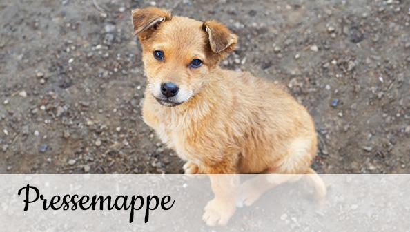 Tierschutz-Shop Pressemappe
