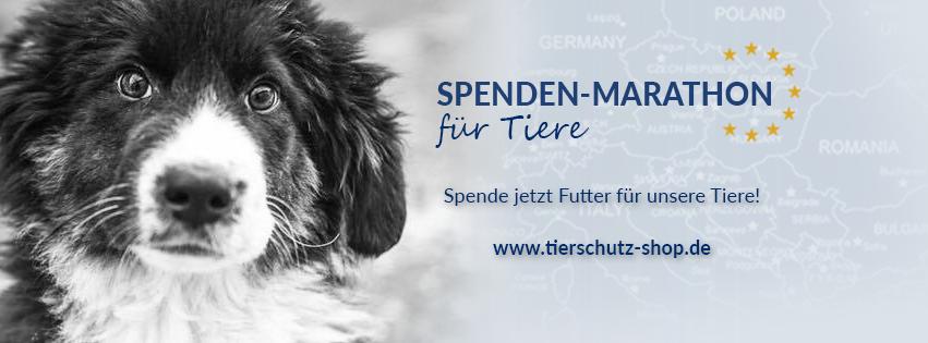 Spendenmarathon_für Tiere_Facebook_Titelbild_Hund_2017