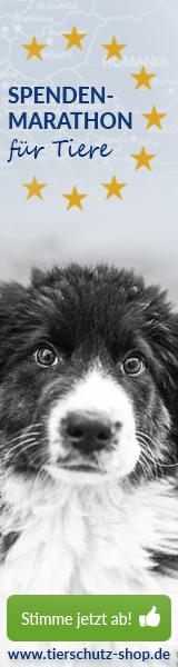 Tierschutz-Shop Spenden-Marathon fuer Tiere 2017