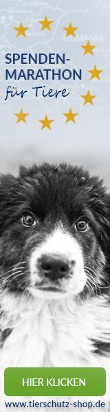 Spendenmarathon_für_Tiere_Affilinet_160x600_Hund_2017