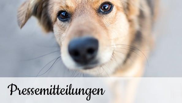 Tierschutz-Shop-Europas-größte-Futter-Spendenplattform-Pressemitteilungen