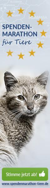 Tierschutz-Shop Spenden-Marathon fuer Tiere 2018