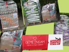 Spendenankunft Berliner Katzenschutz 1