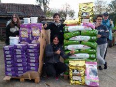 Spendenankunft Katzenhilfe Gelderland 1