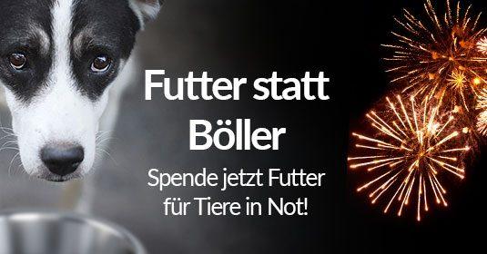 Pressemitteilung Tierschutz-Shop Ankuendigung Spendenaktion Futter statt Boeller 2019