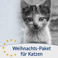 Spenden-Marathon-für-Tiere-Weihnachts-Paket-für-Katzen