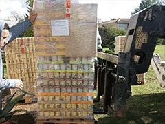 Spendenankunft Pfotenschutz-Bulgarien-2