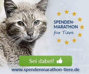 Tierschutz-Shop Spenden-Marathon fuer Tiere 2018