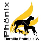 logo_phoenix_farbig_quadratisch_180x180_.jpg