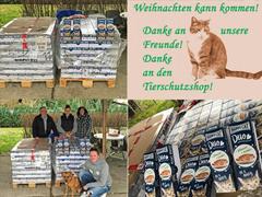 Spendenankunft-Berliner Katzenschutz