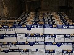 Spendenankunft-Katzenhilfe-Gelderland-3