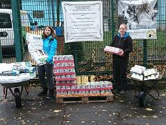 Spendenankunft Tierheim-Alsfeld-1