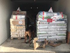 Spendenankunft Tierhilfe-Costa-del-Almeria-1