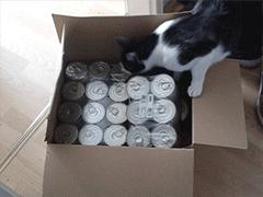 Spendenankunft-Tierschutzverein-Werratal