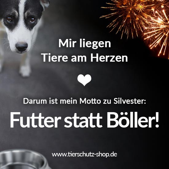 futter-statt-boeller-statement