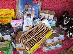Spendenankunft Tierhilfe-Fortuna-1