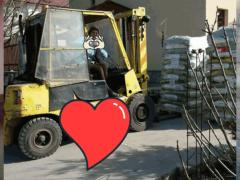 Spendenankunft Katzenhilfe-e.V.-Pfotenschutz-Bulgarien-2