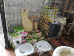 Spendenankunft Katzenhilfe-Gelderland-1