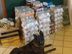 Spendenankunft Tierheim-Cappel-in-Marburg