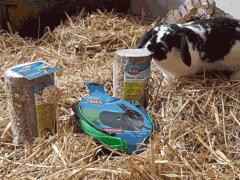 Spendenankunft Tierschutzverein-Alsfeld