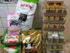 Spendenankunft Tierschutzverein-Freital