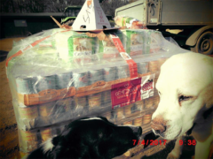 Spendenankunft Tiergnadenhof Jugendfarm