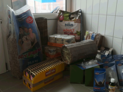 Spendenankunft Tierheim-Feucht-1