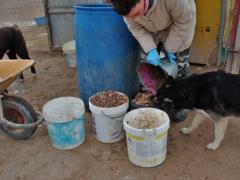 Tierschutzverein ASPA 2