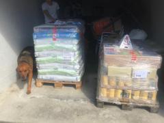 Spendenankunft Tierhilfe-Costa-del-Almeria-2