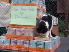 Spendenankunft Tierheim Lindau