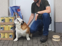 Spendenankunft Tierschutzverein Falkensee